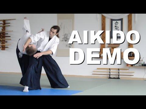 Aikido Demonstration 2016 - 2017