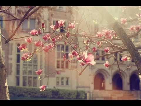 Misty Edwards - Like a Fragrance, Like a Sweet Perfume ( Spontaneous Song)