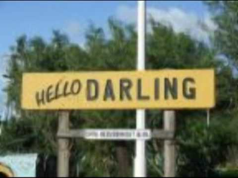 HELLO DARLING LYNN ANDERSON See description for the Lyrics