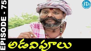 Adavipoolu || Episode 75 || Telugu Daily Serial - IDREAMMOVIES