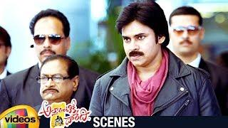 Pawan Kalyan Punch Dialogue   Attarintiki Daredi Telugu Movie   Trivikram   Samantha   Pranitha - MANGOVIDEOS
