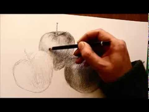Dibujar bodegón, manzanas a grafito (Lápiz carbón)- drawing apples