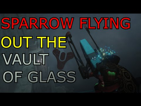Sparrow Flying Out The Vault Of Glass (MOTW submission)