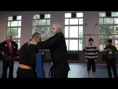 Hapkido Police training at Beijing Sports Universtiy 2 of 18