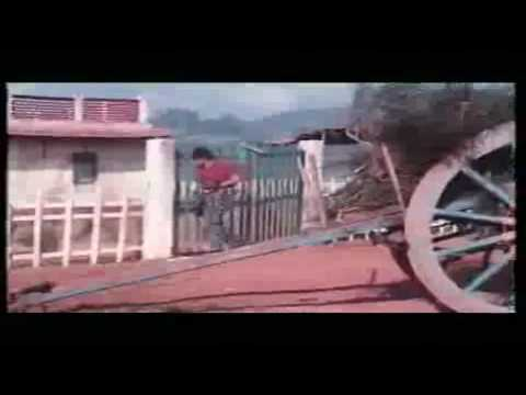 Dil Deewana [from Maine Pyar Kiya]