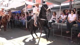 Ferias regionales en Jerez de Garcia Salinas (Jerez, Zacatecas)