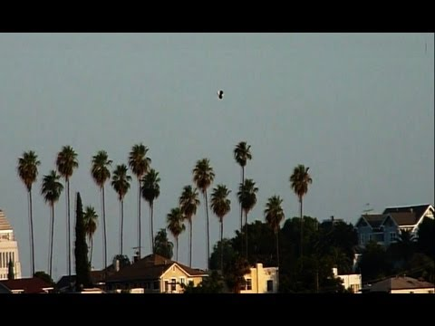 UFO Sightings New UFO Footage North Hollywood! Incredible UFO Sighting Watch Now!