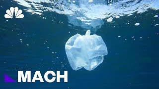 A Mutant Plastic-Eating Enzyme Could Help Solve The World's Waste Problem | Mach | NBC News - NBCNEWS