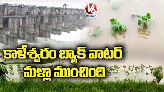 Ground Report On Farmers Face Huge Losses With Kaleshwaram Backwaters | V6 News - V6NEWSTELUGU