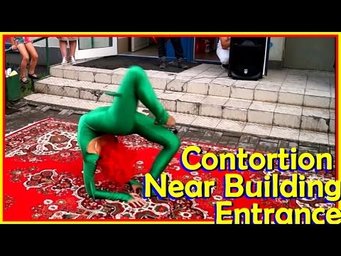 Contortion Collection - 4