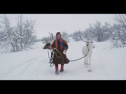 People under the northern lights | Story of a Sami reindeer herder