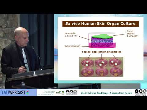 Dead Sea Skin Research – New Findings in Treatments & Products