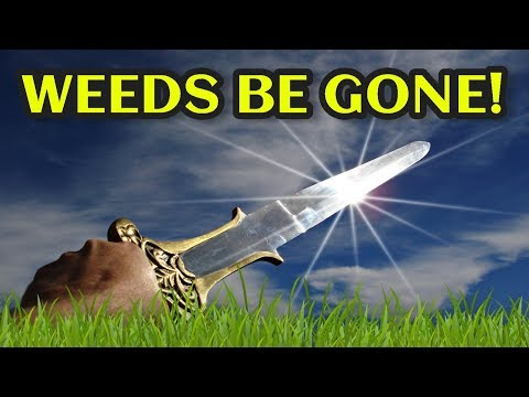 💥THIS WEEDING TOOL⚔️GETS IN PLACES OTHER HOES CAN'T🌿