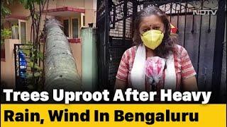 Heavy Rain And Strong Winds Lash Bengaluru - NDTV