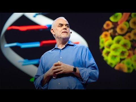 The radical possibilities of man-made DNA | Floyd E. Romesberg