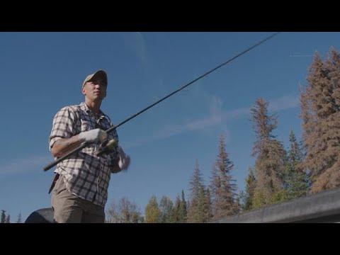 Alaska verbiedt noodgedwongen vissen op unieke zalm: 'Dit doet pijn' - RTL NIEUWS