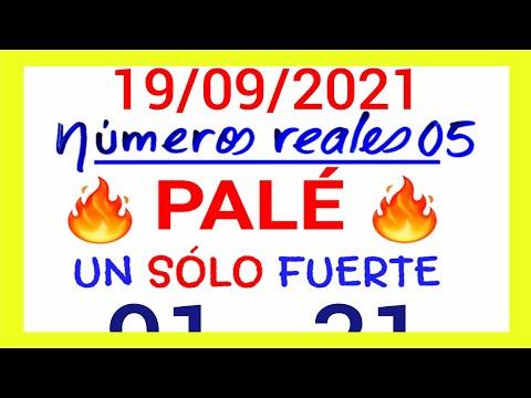 NÚMEROS PARA HOY 19/09/21 DE SEPTIEMBRE PARA TODAS LAS LOTERÍAS...! Números reales 05 para hoy...!!