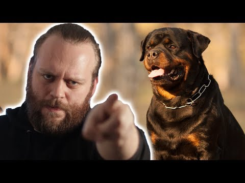 What's the BEST Guard Dog Breed FOR YOU! #2
