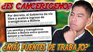 TRANSGÉNICOS EN BOLIVIA - Beneficios y Consecuencias