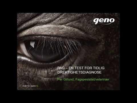 PAG drektighetstest - Hva, hvordan og hvorfor v/Per Gillund