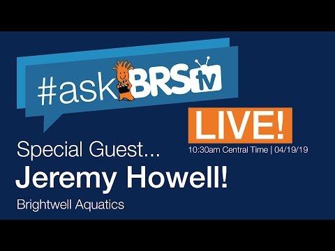 Saltwater tank plumbing & more w/ Jeremy from Brightwell Aquatics! | #AskBRStv Live