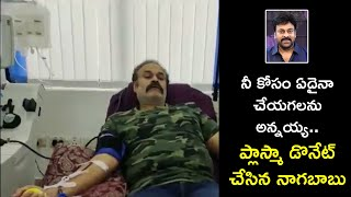 Naga Babu Donates Plasma | Naga Babu Helping Corona Patients | Rajshri Telugu - RAJSHRITELUGU