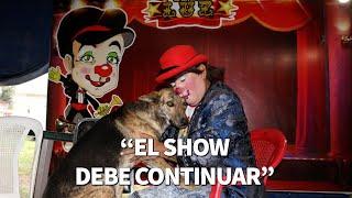 """""""El show debe continuar"""": La filosofía de Peluzín ante una cadena de malas noticias   Guatevisión"""