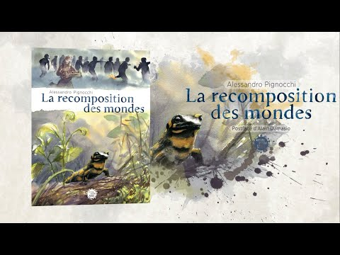 Vidéo de Alessandro Pignocchi