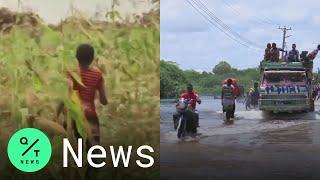 Locust Swarms, Floods and Coronvirus Strike Somalia