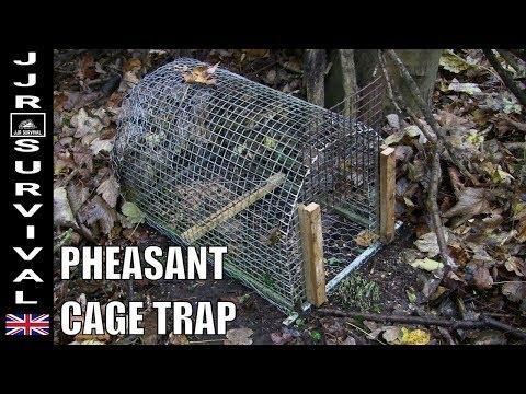 Pheasant Cage Trap