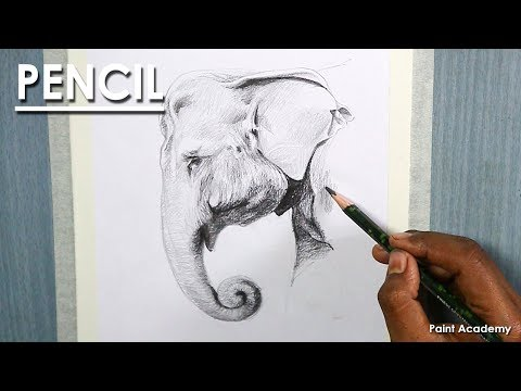 How to shade An Elephant Face