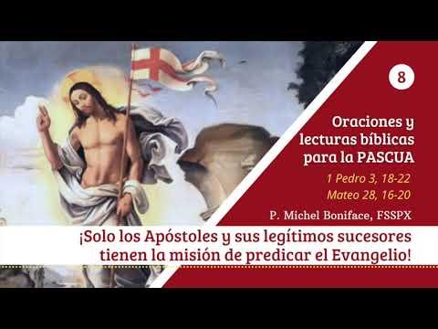 8 ¡Solo los Apostoles y sus legitimos sucedores tienen la mision de predicar el Evangelio!