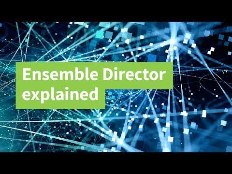 Ensemble Director Explained