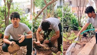 Allu Sirish Accepts Vishwak Sen's Green India Challenge - Latest Tollywood News | TFPC - TFPC