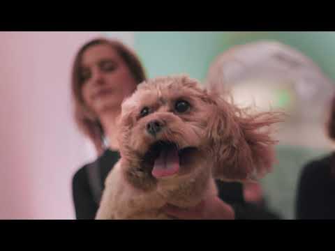 The Klarna Pup-Up Salon - London