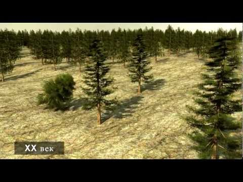 Sustainable Forestry - the Swedish Model (Russian version)