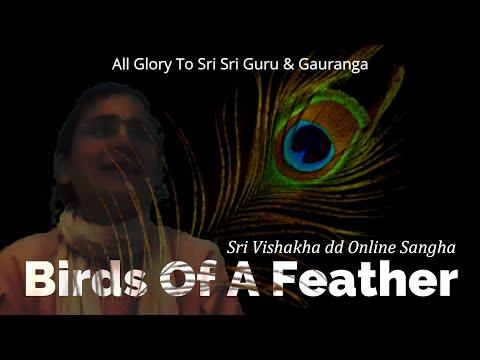 Birds Of A Feather   -   Sriyukta Vishakha dd  -