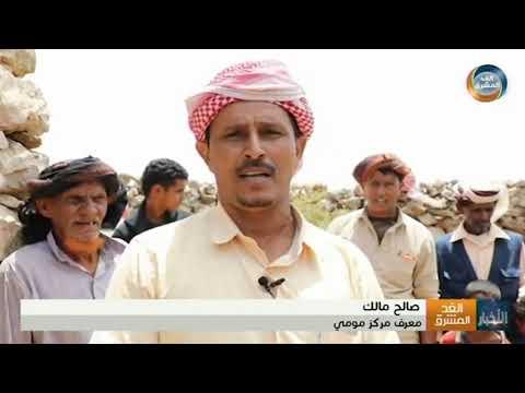 نشرة أخبار الخامسة مساء | مؤسسة خليفة تغيث أهالي مومي في أقصى الشمال الشرقي لأرخبيل سقطرى (14 أغسطس)
