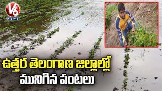 ఉత్తర తెలంగాణ జిల్లాల్లో మునిగిన పంటలు..  Farmers Face Huge Losses With Damage Of Crops    V6 News - V6NEWSTELUGU