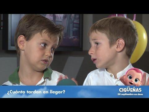 """Cigüeñas - ¿De dónde vienen los bebés"""" HD"""