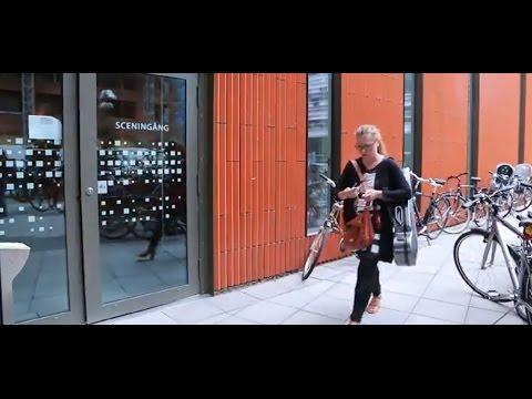 Öresundsregionen 2015: En vardag full av gränshinder