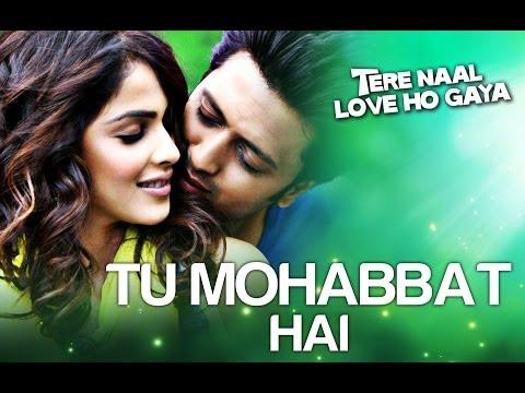 Tere Naal Love Ho Gaya - Tu Mohabbat Hai (Official Video Song)