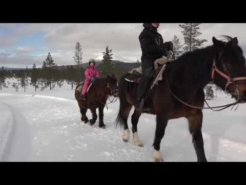 Vinterridning på Idre Fjäll