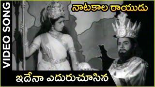 Natakala Rayudu Movie Song | Idena Ne Eduruchisina | Kanchana | NagaBushanam | Telugu Hit Songs - RAJSHRITELUGU