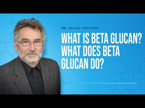Dr Vetvicka Q&A 04: What is Beta Glucan? What does Beta Glucan do?