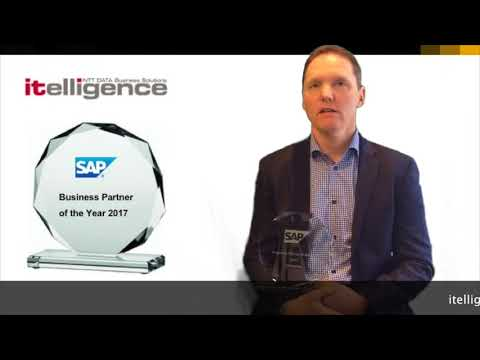SAP Business Partner of the Year 2017