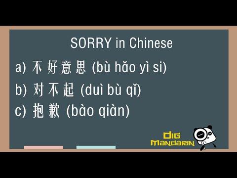 screenwriting an apology mp3 youtube