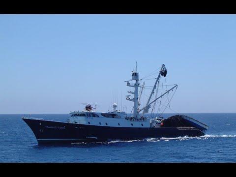Sector pesquero teme que ampliación de zonas marítimas protegidas