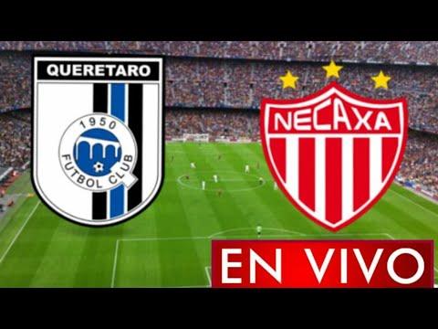 Donde ver Querétaro vs. Necaxa en vivo, por la Jornada 8, Liga MX 2021