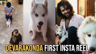 Vijay Devarakonda First Instagram Reel | Vijay Devarakonda Pet Dog The Storm Devarakonda | TFPC - TFPC